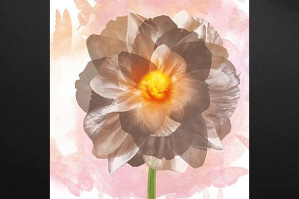 toile design fleur déco floral