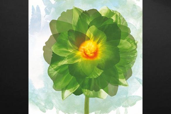 vert toile moderne design
