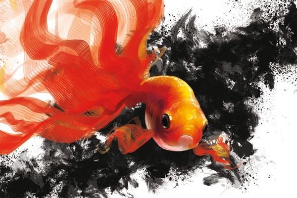 Tableau d co goldfish par d oztel izoa for Nom poisson rouge