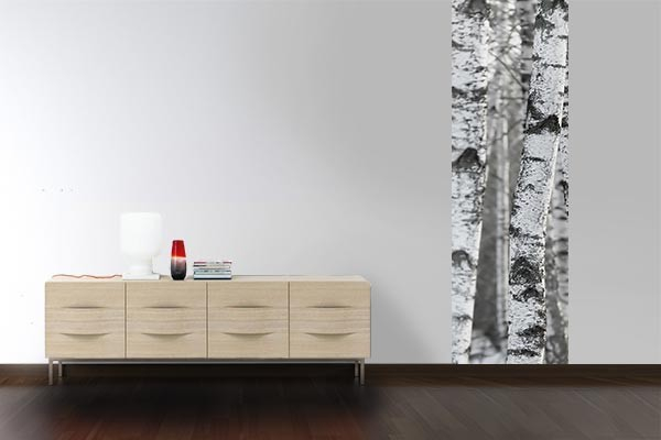 papier peint mural arbre blanc izoa. Black Bedroom Furniture Sets. Home Design Ideas