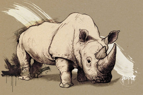Papier Peint déco Rhinocéros Par D. Seppoloni