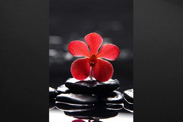 Perles de Silence Tableau zen fleur galet noir