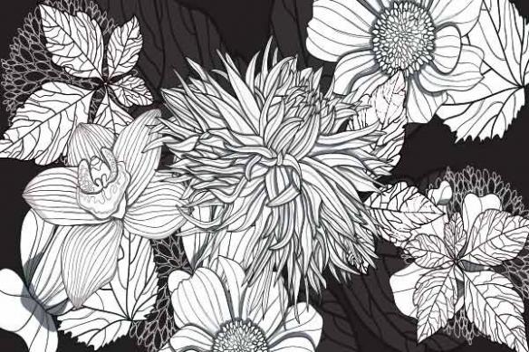 Poster xxl orchide noir