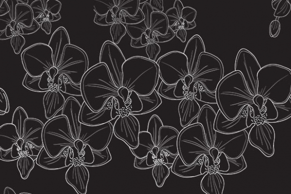 poster mural déco orchidées noir