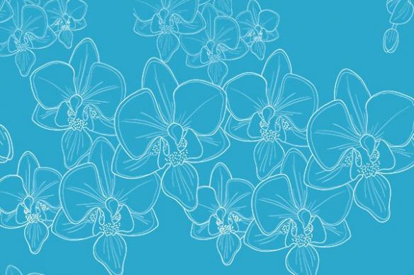 Papier peint mural orchidées bleu ciel