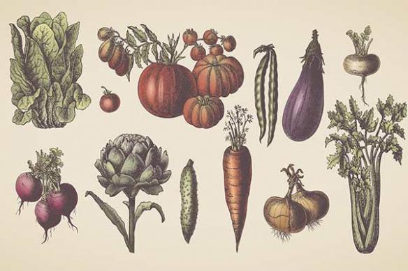 Tableau retro cuisine légumes artichaud oignon