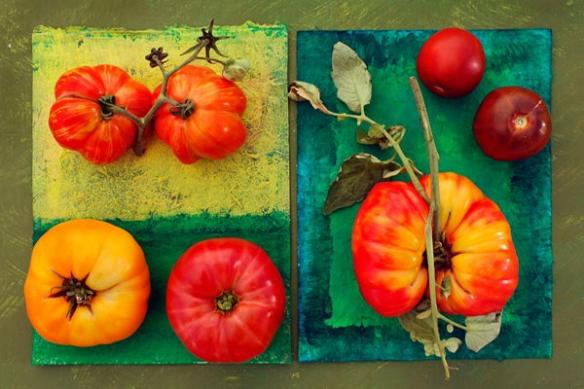 Tableau Déco pour la cuisine Variétés de Tomates
