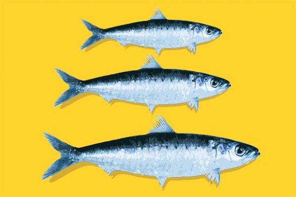 Tableau pour cuisine déco poisson