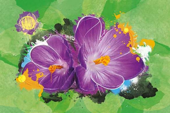 décoration salon toile déco verte magenta flower