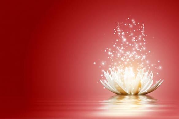 toile photo design lotus rouge