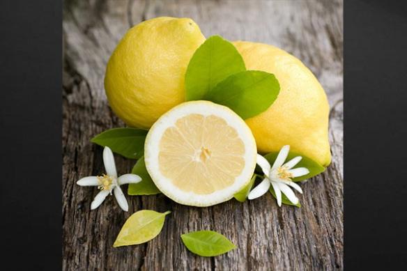 Tableau cuisine moderne Citrons