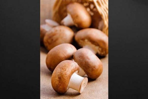 Tableau cuisne champignons