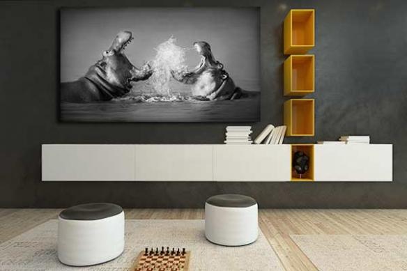 Tableau noir et blanc Combat d'hippopotames