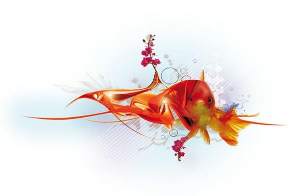 Tableau design poisson rouge par yann wallaert izoa for Deco poisson rouge