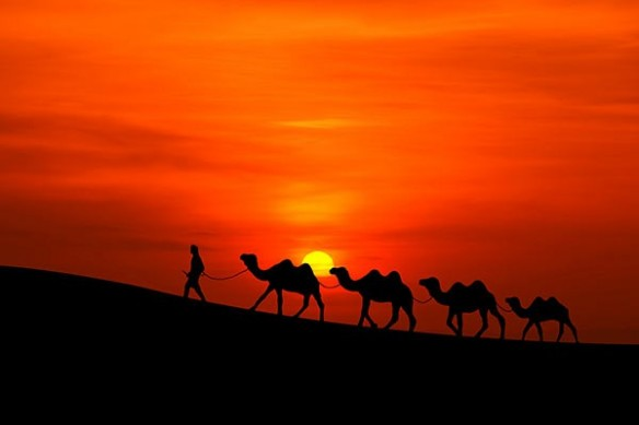 caravane touarege desert