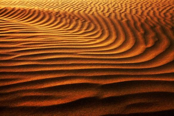 Desert de Karakoum