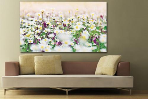 tableau fleur vente de tableaux nature et fleurs pour d co murale izoa. Black Bedroom Furniture Sets. Home Design Ideas