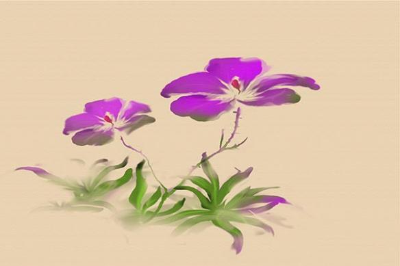 estampe capucines violette tableau aquarelle moderne