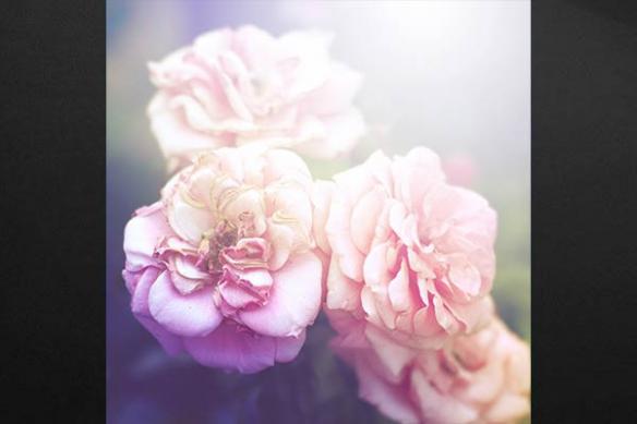 roses retro vintage deco chambre