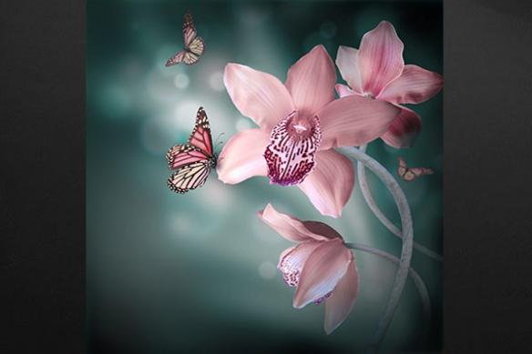 Orchidée Rose papillon tableau nature