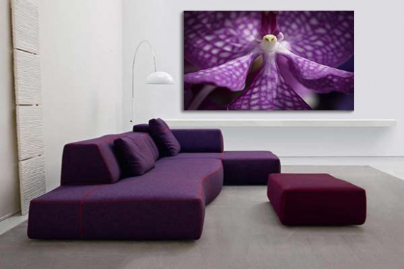 decoration design coeur orchidee