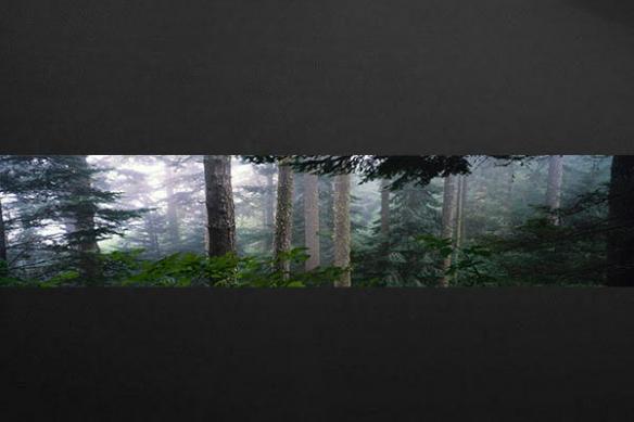 deco mural Forêt