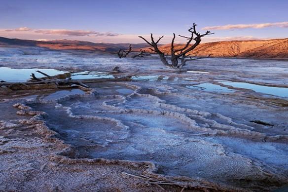 paysage aride désert