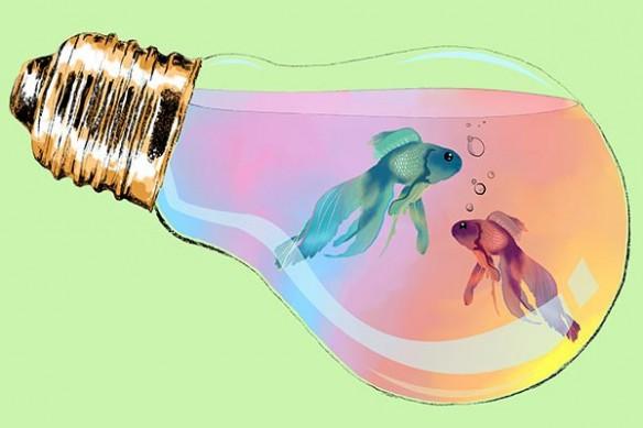 Tableau aquarium poisson ampoule