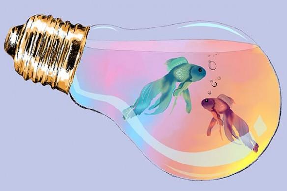 Tableau original design poissons
