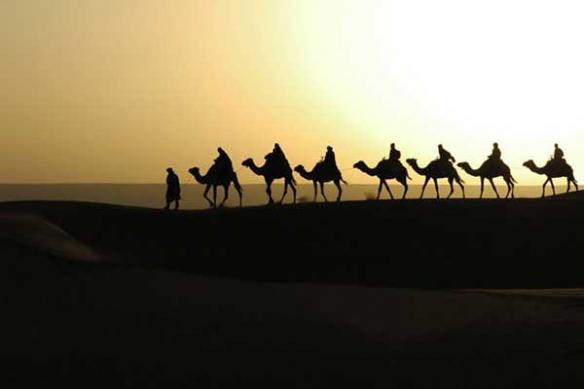 Sahara touarege caravane