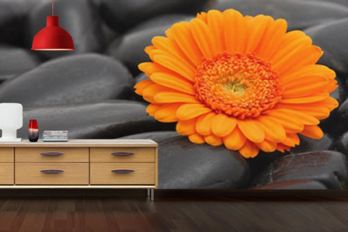Papier Peint fleur zen Marguerite