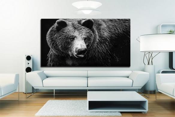 Tableau noir et blanc grizzly