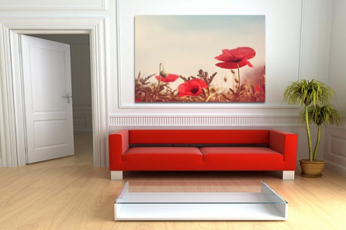 d coration design avec tableau xxl coquelicots rouges izoa. Black Bedroom Furniture Sets. Home Design Ideas