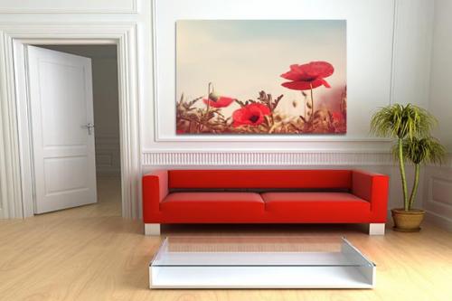 Décoration design avec Tableau XXL Coquelicots Rouges