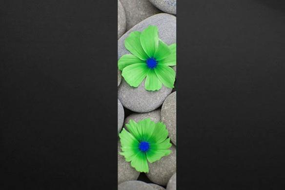 deco mur lé fleur vert sur galet