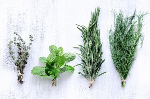 Tableau pour cuisine Plantes aromatiques