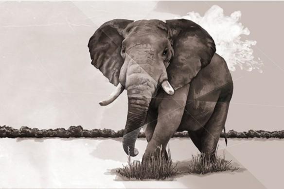 Tableau déco Eléphant de la savane sépia