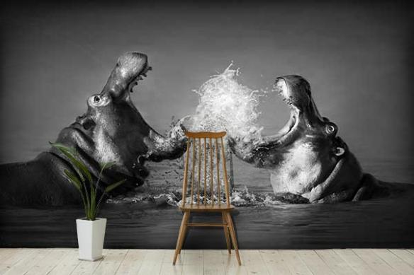 Poster mural Hippopotames