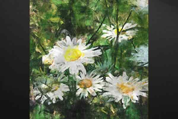 Tableau fleur marguerites blanches izoa - Tableau triptyque fleurs blanches ...