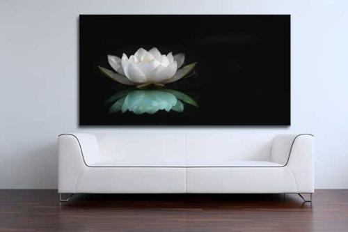 Toile fleur doux reflet