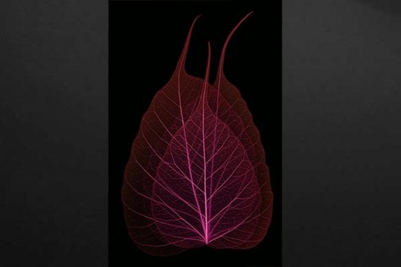 Toile imprimée feuille séchée rouge