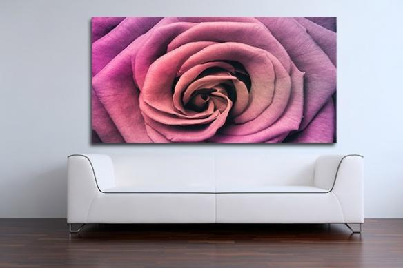 Tableau décoration coeur de rose