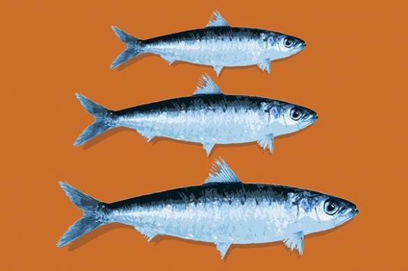 Tableau cuisine rétro poisson