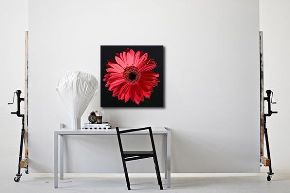 Tableau déco fleur soleil