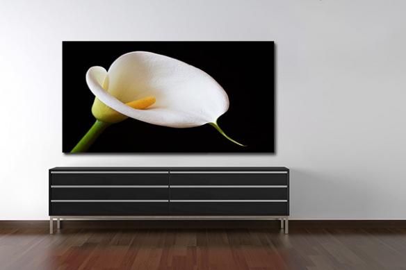 Tableau décoration pétale blanc