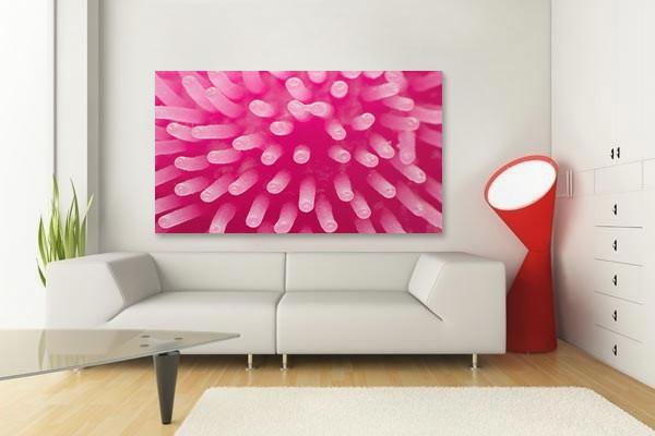 tableau original anemone izoa. Black Bedroom Furniture Sets. Home Design Ideas