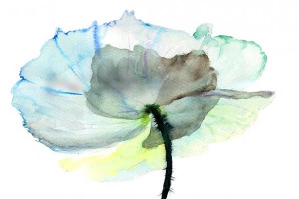Toile déco Fleur d'encre