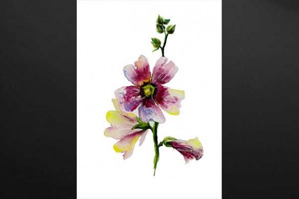 Tableau fleur Viola Sororia