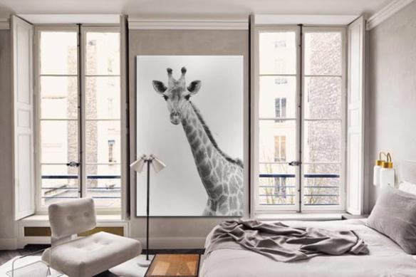 Tableau moderne Girafe noir et blanc