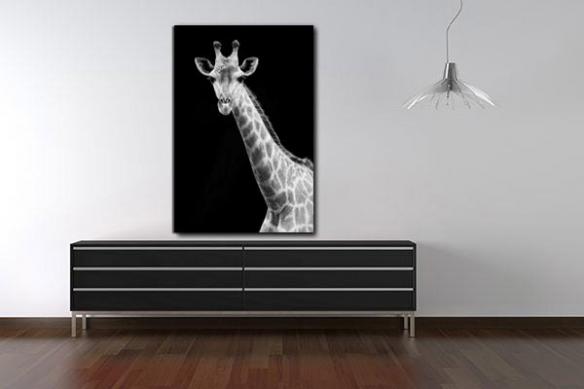Tableau photo Girafe noir et blanc